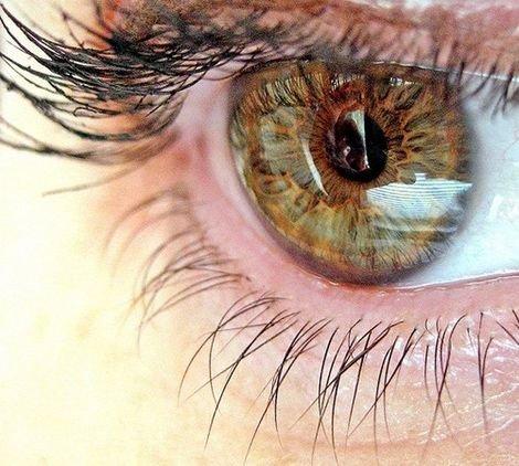 ceva cu viziune în ochi)