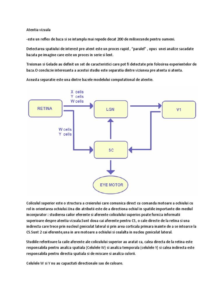 studii vizuale directe)