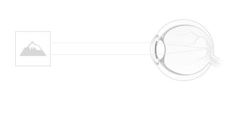 contur pentru dezvoltarea vederii binoculare
