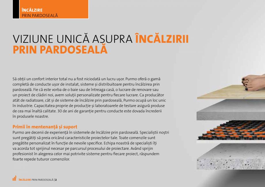 Rodica Nicov   Viziune unică. Un designer pasionat. – RED by Rodica Ciorănică