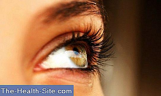 """VALERIU CUȘNIR: """"Miturile nu-ți salvează vederea. Opriți miopia!"""""""