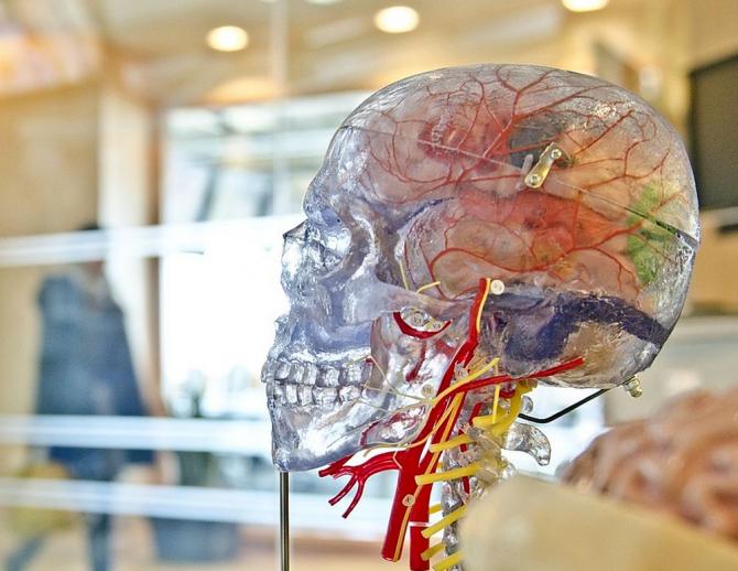 modul în care nervii afectează vederea