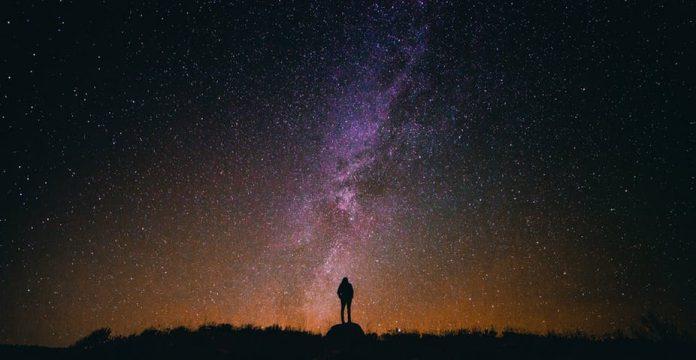 viziunea unui prădător și extraterestru)